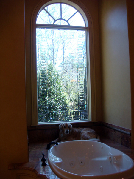 Houston-Tub-Windows